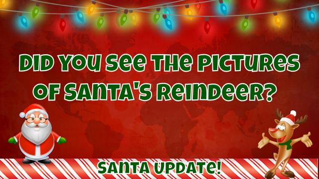 Pictures of Santa's Reindeer 1