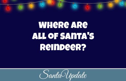 Reindeer not back yet