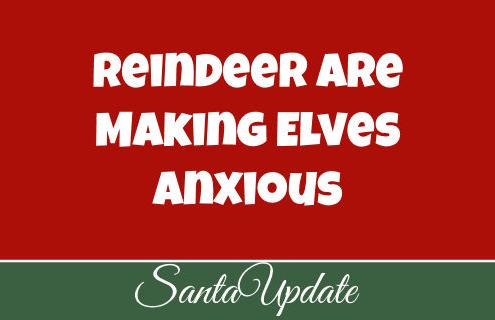 Reindeer Anxiety