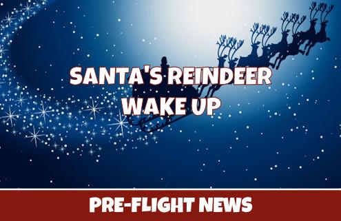 Reindeer Wake Up