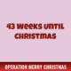 43 Weeks Until Christmas