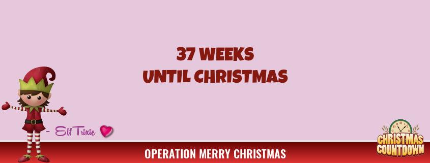 37 Weeks Until Christmas